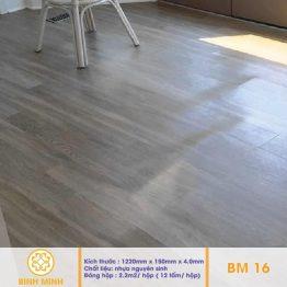 san-nhua-hem-khoa-BM16