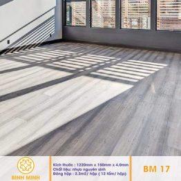 san-nhua-hem-khoa-BM17
