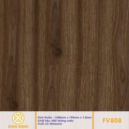 san-go-inovar-fv-808