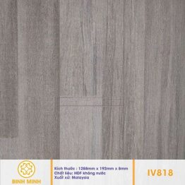 san-go-inovar-iv-818