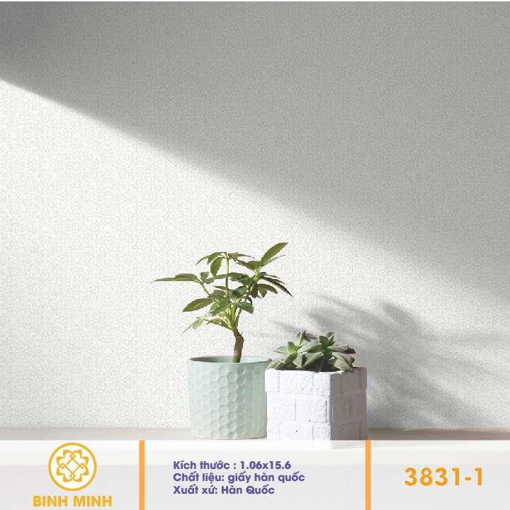giay-dan-tuong-base-3831-1