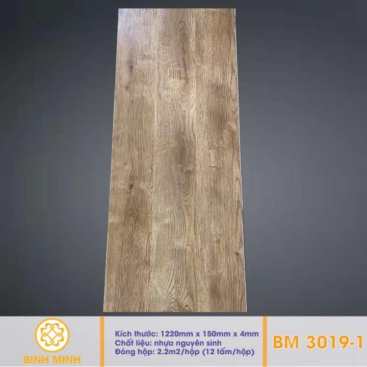 san-nhua-hem-khoa-BM 3019-1