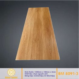 san-nhua-hem-khoa-BM 8091-3