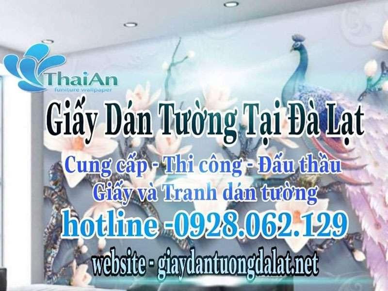 giay-dan-tuong-da-lat