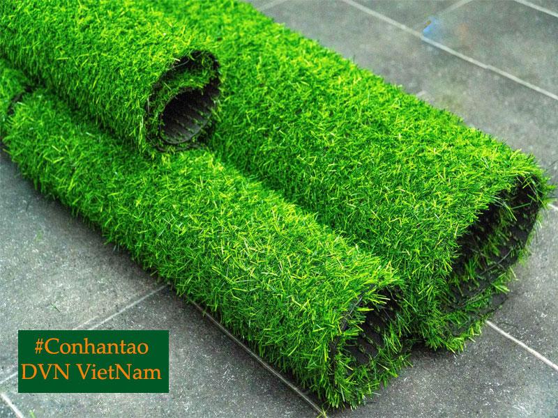 co-nhan-tao-DVN-vietnam
