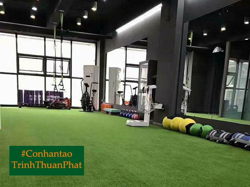 co-nhan-tao-ha-tinh-tai-trinh-thuan-phat