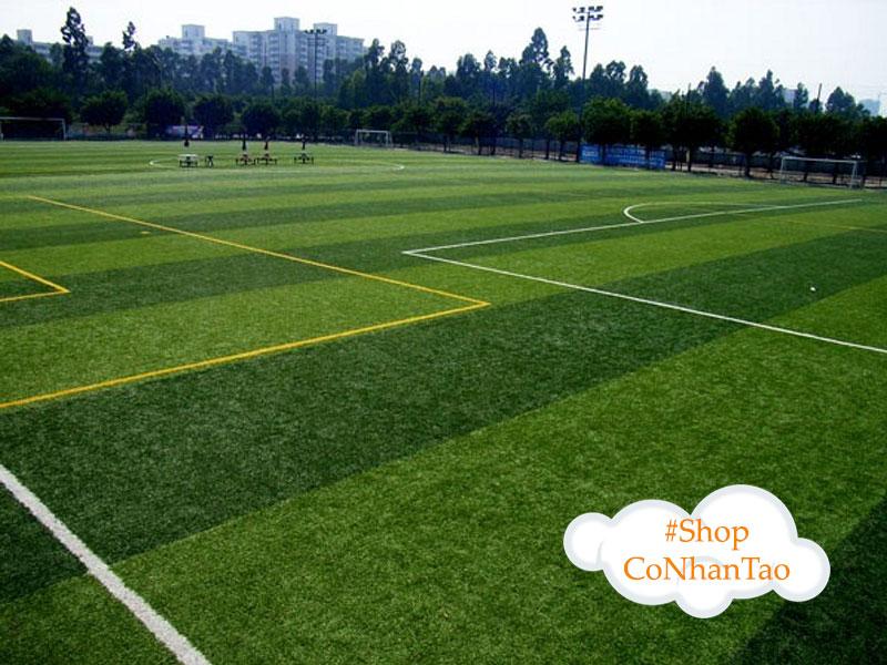 shop-co-nhan-tao-tai-dak-nong-hp-group