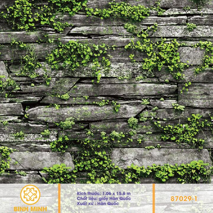 giay-dan-tuong-natural-87029-1