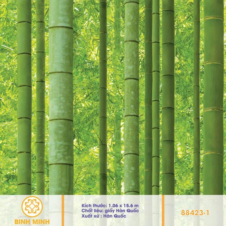 giay-dan-tuong-natural-88423-1