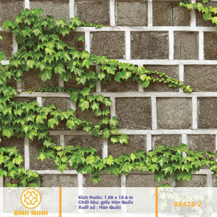 giay-dan-tuong-natural-88428-2