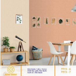 giay-dan-tuong-v-concept-7915-6