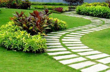 Công ty mua bán cỏ nhân tạo đẹp tại Cần Thơ
