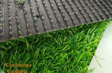 TOP 4 cửa hàng bán và thi công cỏ nhân tạo Cao Bằng giá rẻ