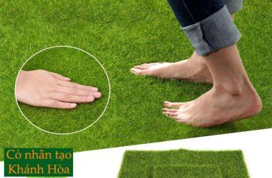 TOP 5 công ty thi công cỏ nhân tạo Khánh Hòa chất lượng