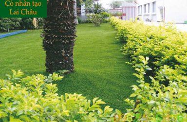 TOP 5 công ty phân phối và thi công cỏ nhân tạo Lai Châu