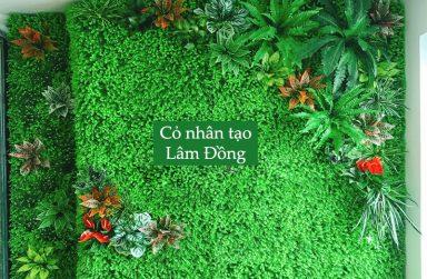 TOP 5 địa chỉ phân phối và thi công cỏ nhân tạo Lâm Đồng