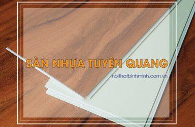 Sàn nhựa giá rẻ Tuyên Quang, thi công sàn nhựa hèm khóa